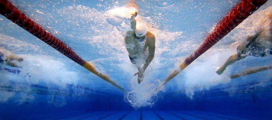 cover free swim6